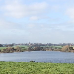 pickmere-lake